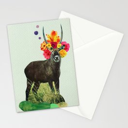 i've been searching for something i've never seen Stationery Cards