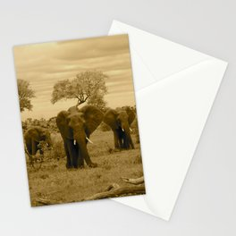 Elephant sepia Stationery Cards
