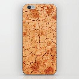 Desert lover iPhone Skin