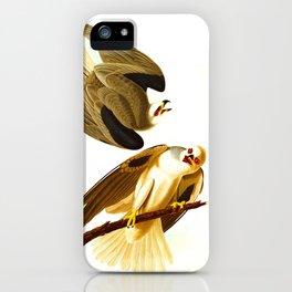 Black Winged Hawk Illustration iPhone Case