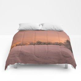 Golden Adventure Comforters