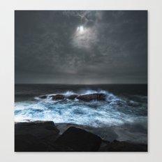 Moonlit Shoals Canvas Print