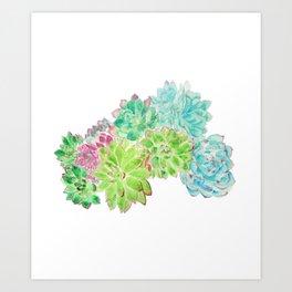 succulent arrangement watercolor painting Art Print