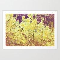 yellow flower - Forsythia Art Print