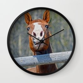 Horse Humour Wall Clock