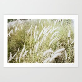 Wind in my Hair.  Art Print