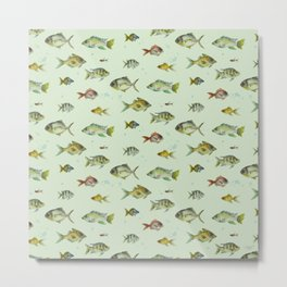 Colourful Fishies Metal Print