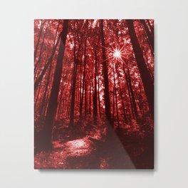 Shenandoah Red Metal Print