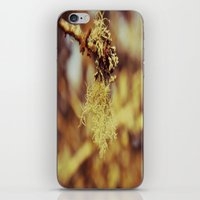 spanish iPhone & iPod Skins featuring Spanish moss by  Alexia Miles photography