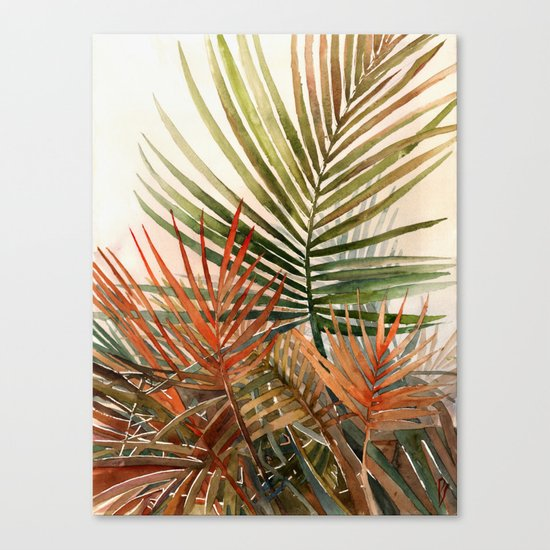 Arecaceae - household jungle #1 Canvas Print