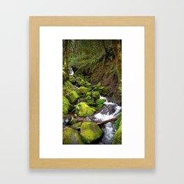 (#49) Bright Green Spring Framed Art Print