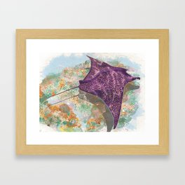 Colorful Ocean Manta Ray Framed Art Print