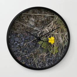 The Little Yellow Icelandic Flower Wall Clock