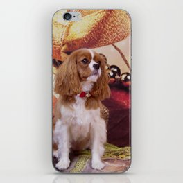 Ribbons, Bells And Cavalier King Charles Spaniel iPhone Skin