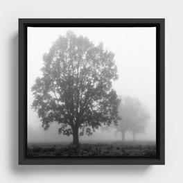 Trees on a Misty Morning Framed Canvas