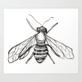 The Pale Bee Art Print