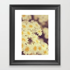 Daisy Heaven Framed Art Print