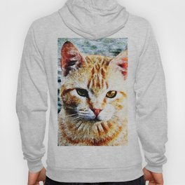 Young Yellow Cat Hoody