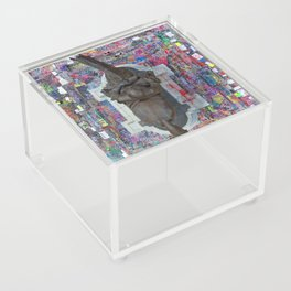 BLM - Robert E Lee Statue Acrylic Box