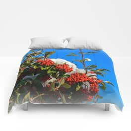 Snow Berries Comforters