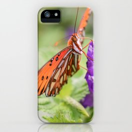 Butterfly in Ometepe, Nicaragua iPhone Case