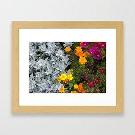 Flowerbed Framed Art Print