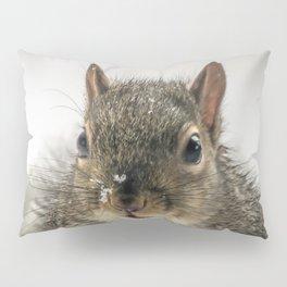 Adorable Praying Squirrel..Feed ME!! Pillow Sham