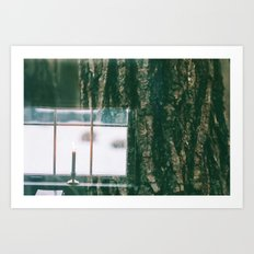 Contrast Between Indoors and The Outdoors Art Print