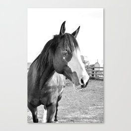 Gentle Friend Canvas Print