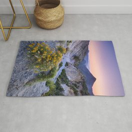 Spring flowers. Piornos. River Dilar Valley. Sunset at the mountains.  Rug