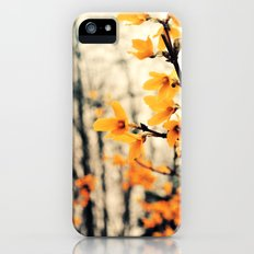 It's Not What it Seems Slim Case iPhone (5, 5s)