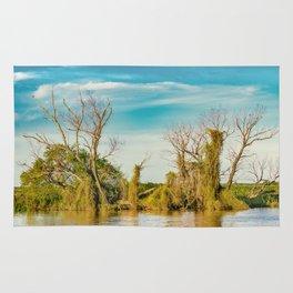 Parana River, San Nicolas, Argentina Rug
