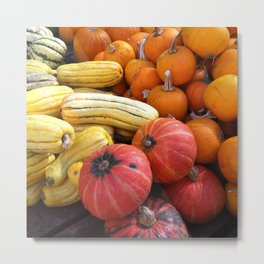 Union Square Market: Pumpkins and Squash Metal Print