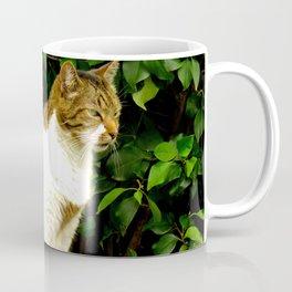 """""""Felis Catus"""" by ICA PAVON Coffee Mug"""