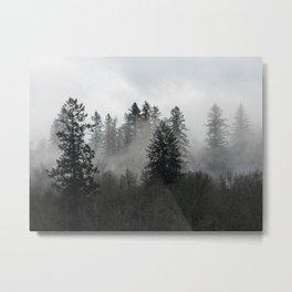 Adventure Forest IX - Pacific Northwest Wanderlust Metal Print