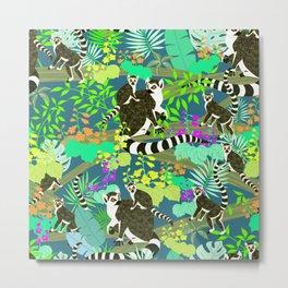 Lemur catta Metal Print