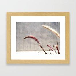 brentwood weeds Framed Art Print
