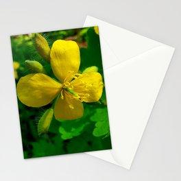Greater Celandine Stationery Cards