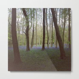 Bluebell Woods - Aldbury Common Metal Print
