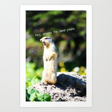 Angry Squirrel Art Print