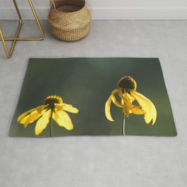Sun Drenched Daisies Rug