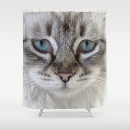 Cat with Blue Eyes Shower Curtain