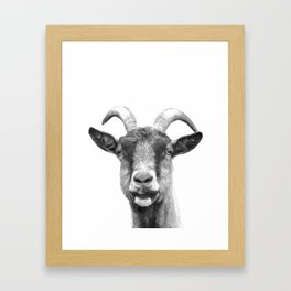 Black and White Goat Framed Art Print