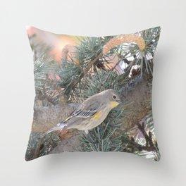 Audubon's Warbler on a Spruce Branch Throw Pillow