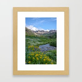 AMERICAN BASIN COLORADO PHOTO -  MOUNTAIN SUMMER IMAGE - WILDFLOWERS PICTURE - LANDSCAPE PHOTOGRAPHY Framed Art Print
