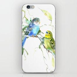 Parakeets, budgies pet bird home decor iPhone Skin