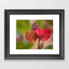 The Sugar Plum Tree Framed Art Print