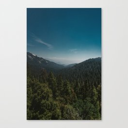 Sequoia National Park XI Canvas Print