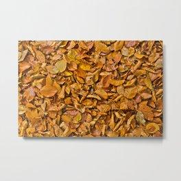 Dark yellow autumn leaves Metal Print