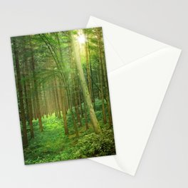 Forest In Morning Light Stationery Cards